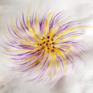 Fluffy flower in purple and yellow watercolor sketch