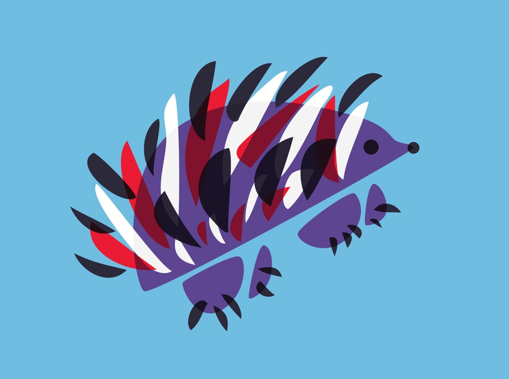 Hedgehog art - colorful abstract illustration
