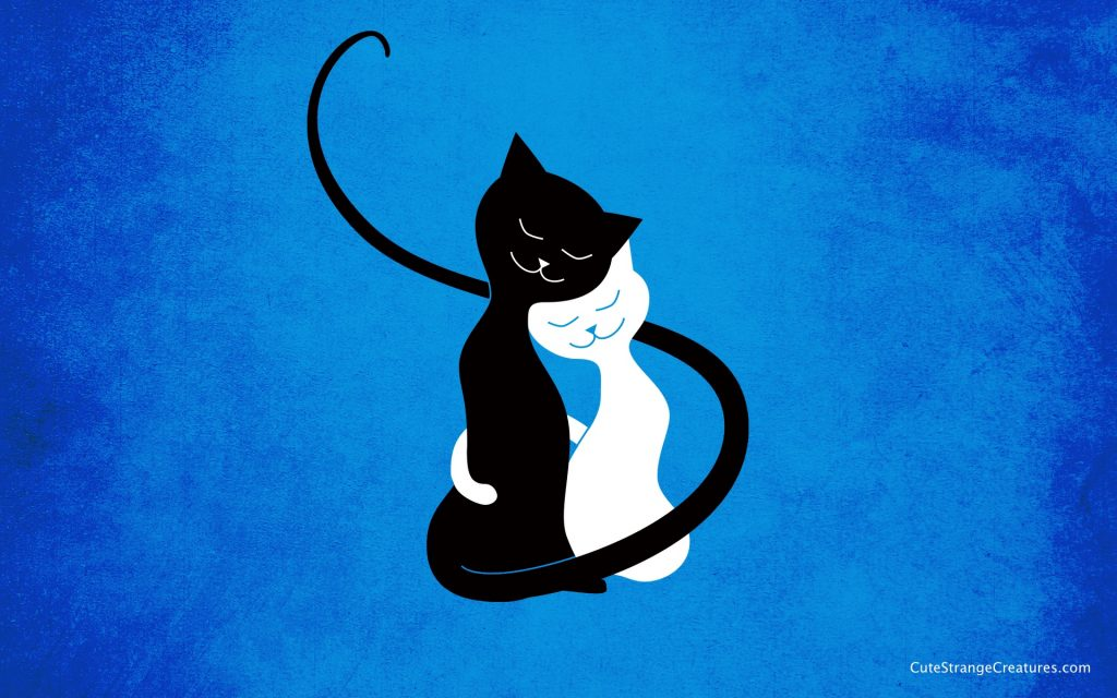 blue-love-cats-desktop-wallpaper-by-boriana-giormova