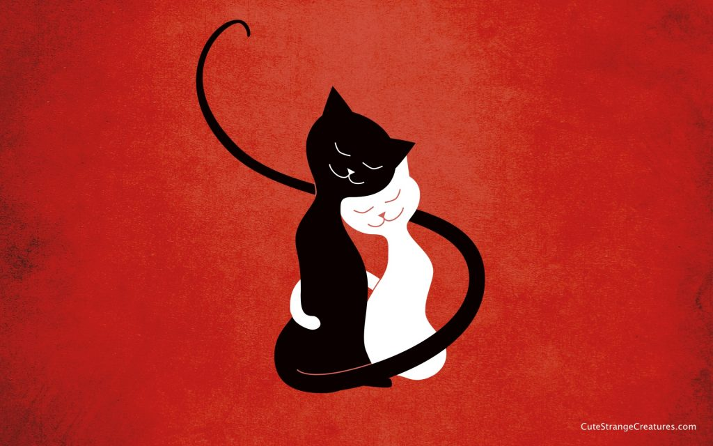 red-love-cats-desktop-wallpaper-by-boriana-giormova