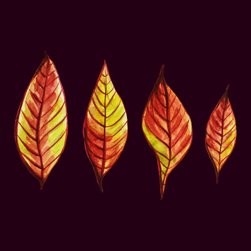 Fun autumn leaves art with four red and yellow leaves