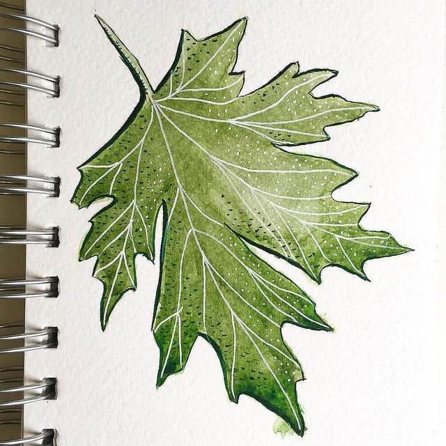 Drawing of a green leaf with white ink veins and dots