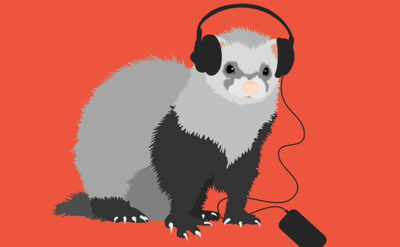 Ferret music lover illustration