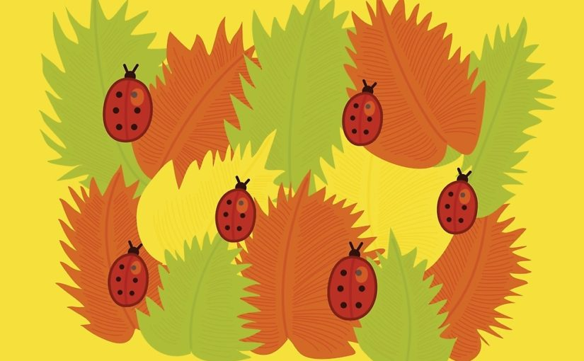Autumn leaves and ladybugs vector illustration